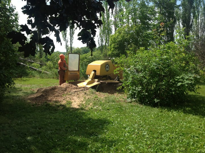 Mid State Tree Service: E7468 Highway 54, New London, WI