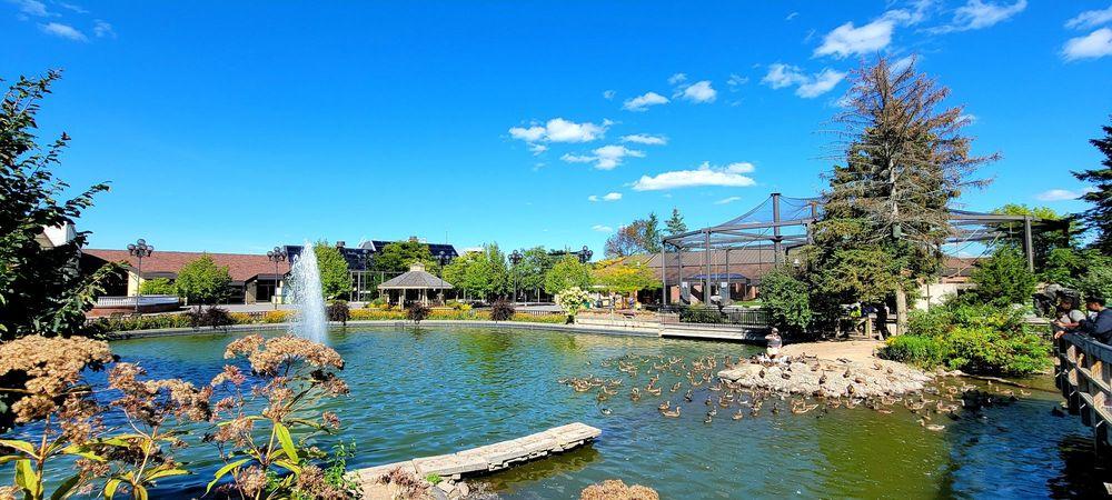 Social Spots from Rosamond Gifford Zoo at Burnet Park