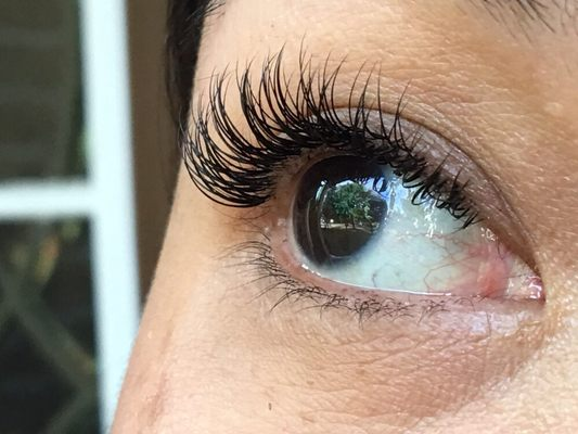 45cf14738f6 Lisa Eyelash Extensions Naperville, IL Eyelashes Artificial - MapQuest