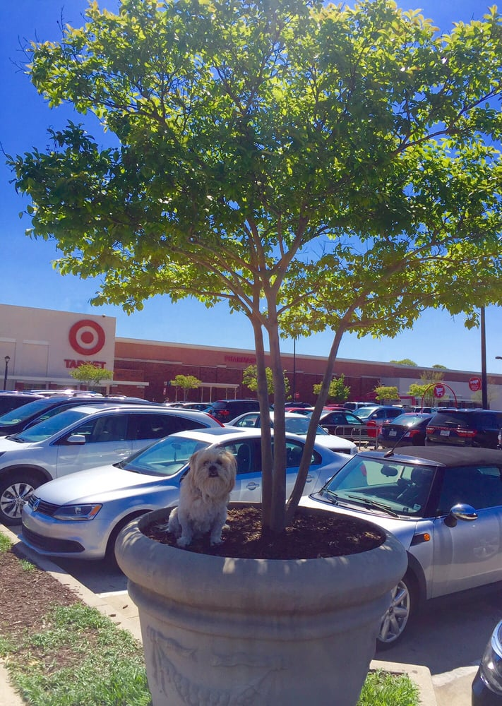 Edgewood Retail District
