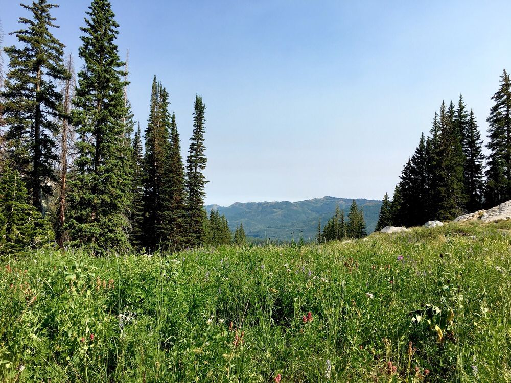 Brighton Lakes Trail: Little Cottonwood Canyon Rd, Salt Lake City, UT