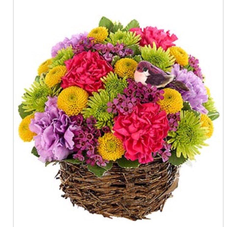 All Occasion Floral & Gift: 703 E Hospital Rd, El Dorado Springs, MO