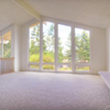 Pro Cleaners & Carpet Services: Ithaca, NY