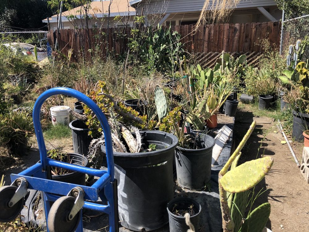 All Seasons Home & Garden Center: 3934 N Mountain View Ave, San Bernardino, CA