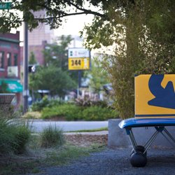 Photo of The Bernice Garden - Little Rock, AR, United States. Bench by