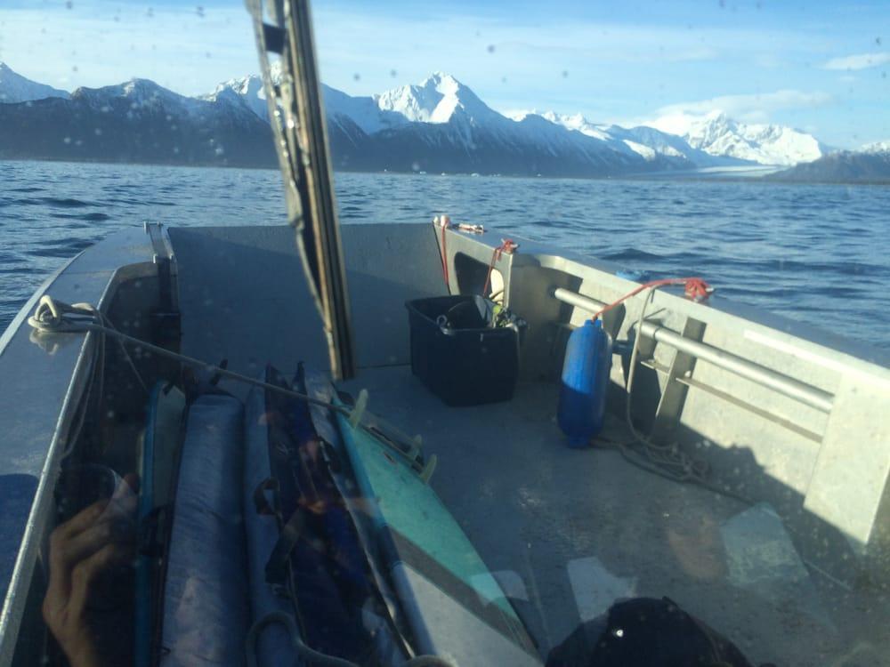 Alaskan Coastal Safari LLC: Small Boat Harbor, Seward, AK