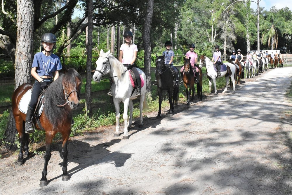 Paradise Pines Equine Center: 30912 Swan Rd, Sorrento, FL