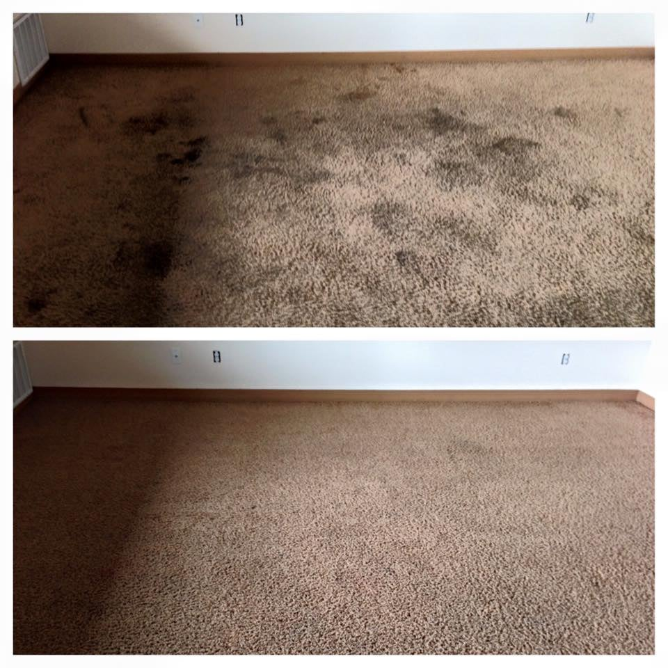Advanced Carpet Care: Warrenton, OR