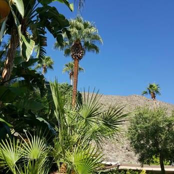 Photo Of Bellatrix Restaurant   Palm Desert, CA, United States. Best View  Right