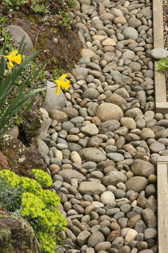 Increasing Permeability In Your Garden Helps Rivers, Too