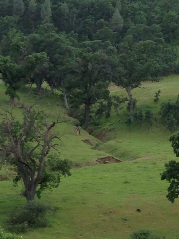 SC2 Outdoors: 17905 Rivers Edge Dr, Red Bluff, CA