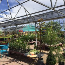 Photo Of Civano Nursery Inc Tucson Az United States