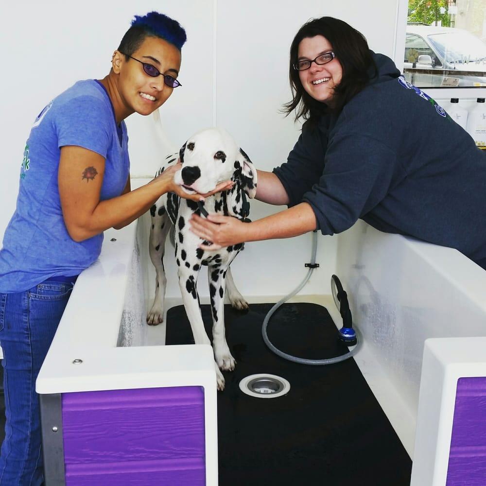 Community Bark Dog Wash & Groom