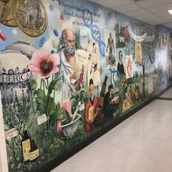 NYU Winthrop Hospital - 40 Photos & 100 Reviews - Hospitals