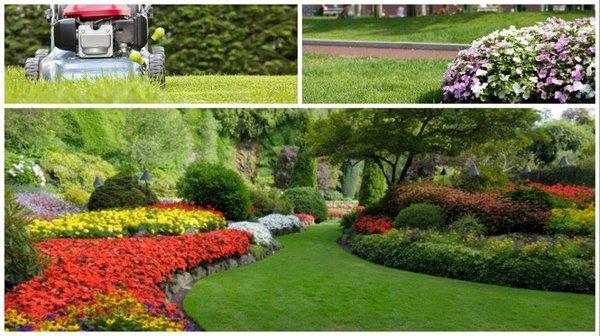 green skapes landscaping 4935 brockman st san antonio tx