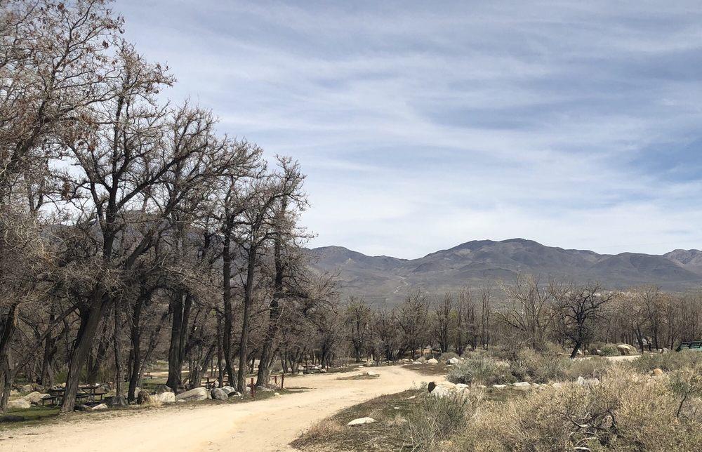 Baker Creek Campground: Baker Creek Rd, Big Pine, CA