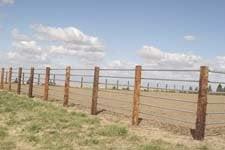 Coyote Mountain Ranch: Dayton, WA