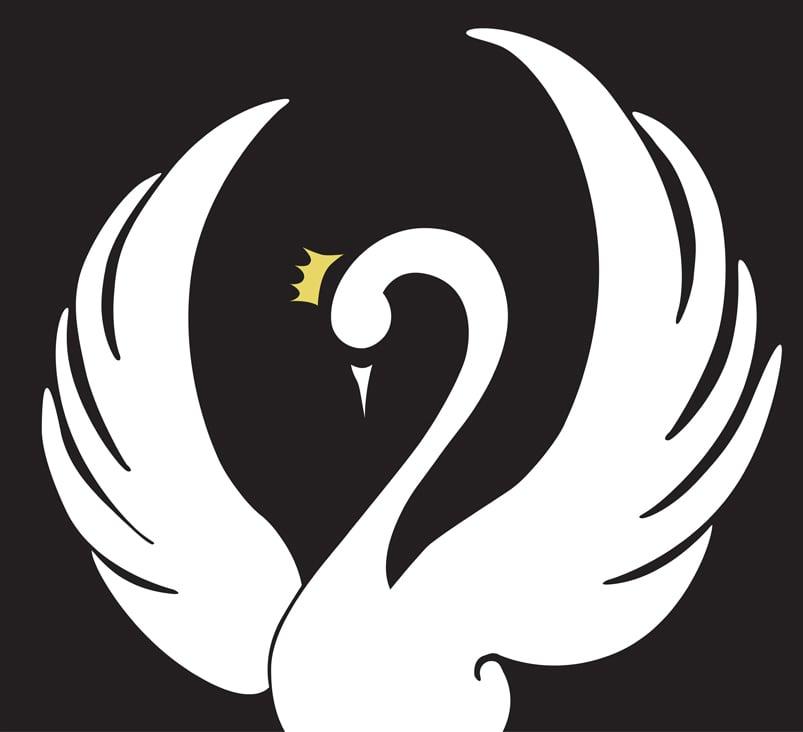 Swan Dancewear