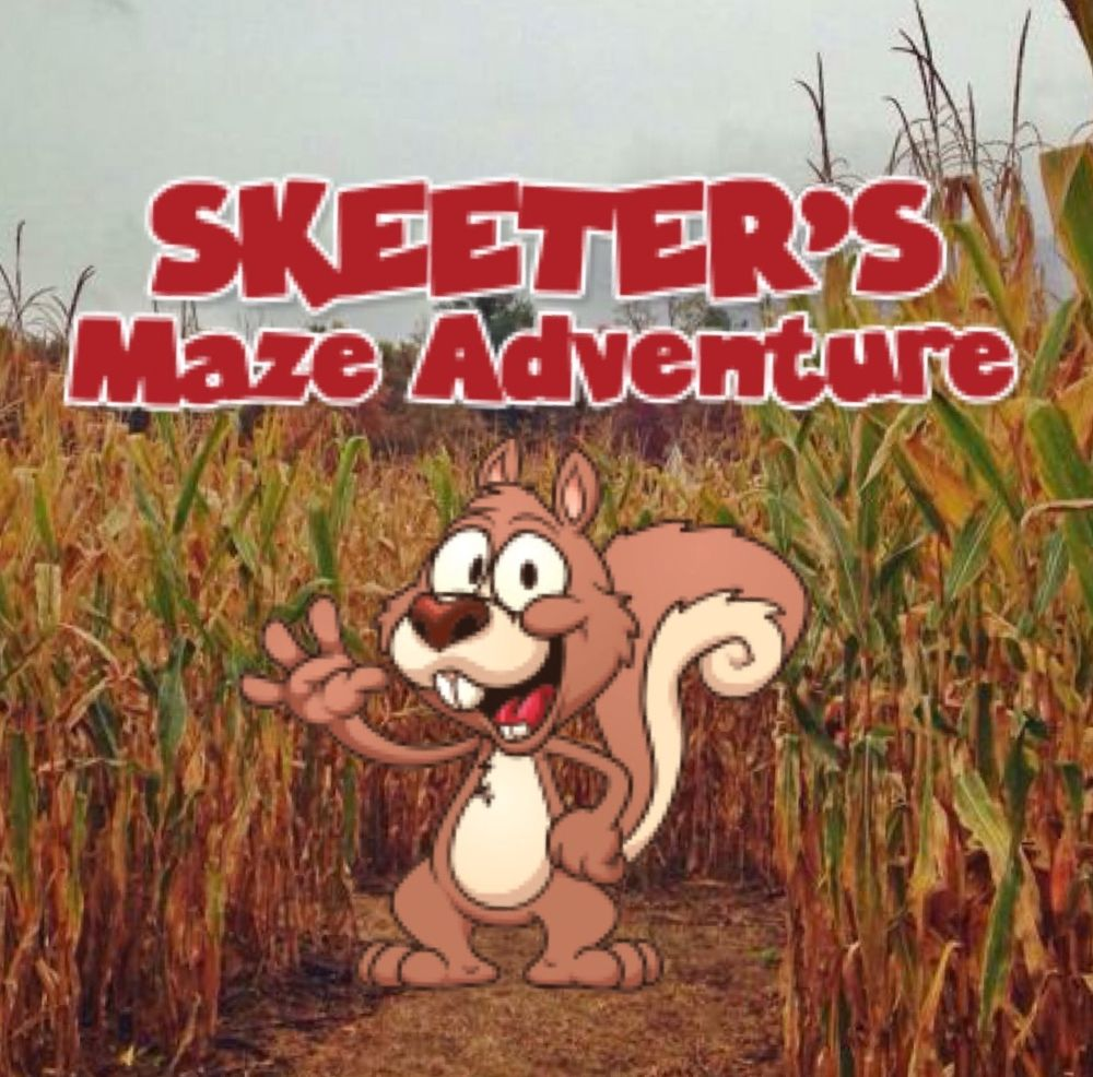 Skeeter's Maze Adventure: 107 Creative Works Ln, Waynesboro, VA
