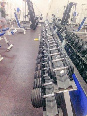 Spunk fitness rochester
