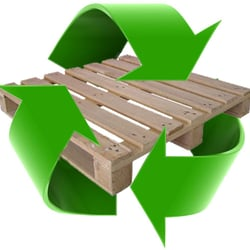 Rafael's Pallet Recycling Services - CLOSED - Recycling
