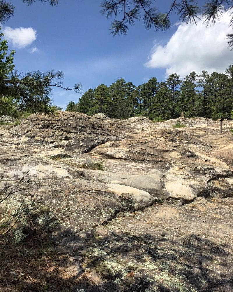 Rock House Cave Trail: 1285 Petit Jean Mountain Rd, Morrilton, AR