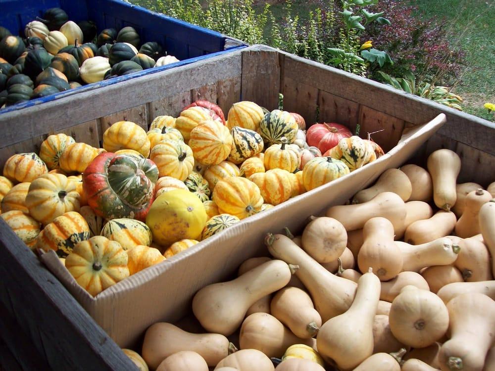 Scenic Ridge Fruit Farms