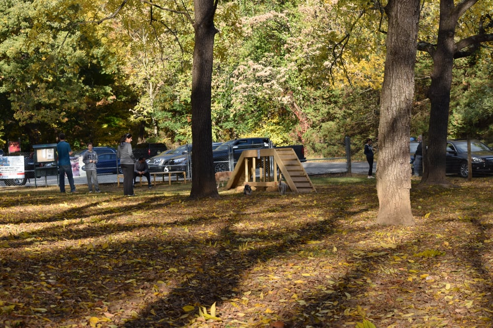 Dog Park Parsippany Nj