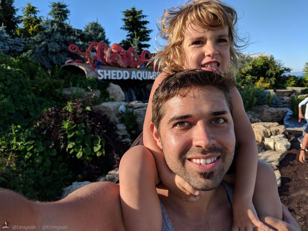 Shedd Aquarium: 1200 S Lake Shore Dr, Chicago, IL