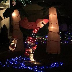 Christmas Circle 103 Photos 26 Reviews Local Flavor Mankato