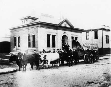 Courtesy Of The Indiana Historical Society Bass Photo