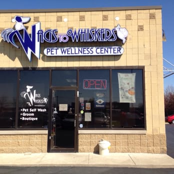Wags to whiskers 27 photos 27 reviews pet stores 16007 s photo of wags to whiskers plainfield il united states solutioingenieria Choice Image