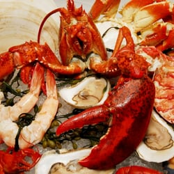 The Best 10 Seafood Restaurants Near Farallon In San Francisco Ca