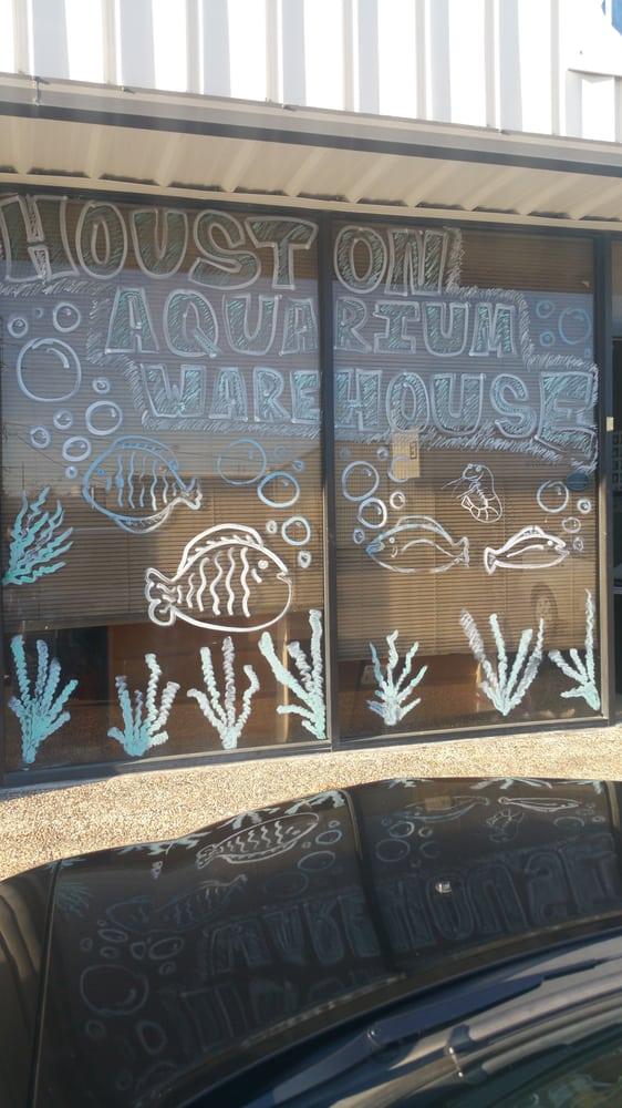 Houston aquarium warehouse 12 photos pet stores for Fish store houston
