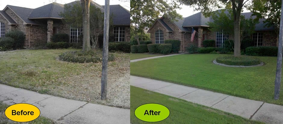 Find The Best & Cheapest Landscaping Companies Leaf raking, lawn mowing, whatever you want, whatever you need.