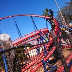 Photo Of Scorpion   Tampa, FL, United States