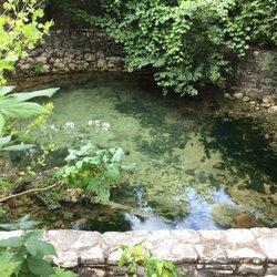 Photo Of Sunken Gardens Springs   Austin, TX, United States. Salamander  Playground.