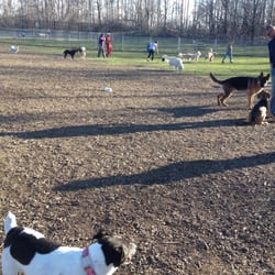 Dog Parks In Brampton
