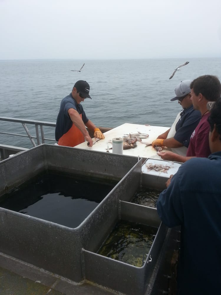 1 to filet your catch yelp for Marina del rey fishing report