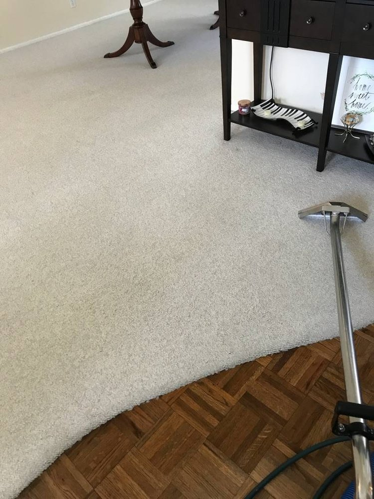 Pro Clean 53 Photos Amp 251 Reviews Carpet Cleaning