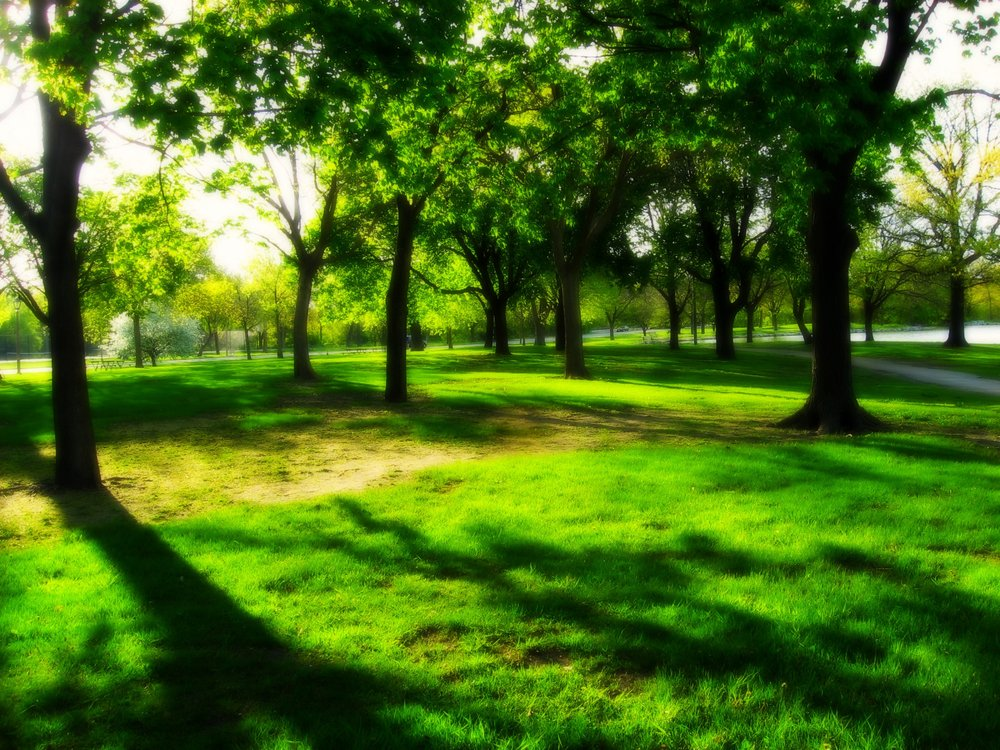 4 D Landscape Irrigation 12502 Sw Lee Blvd Lawton Ok