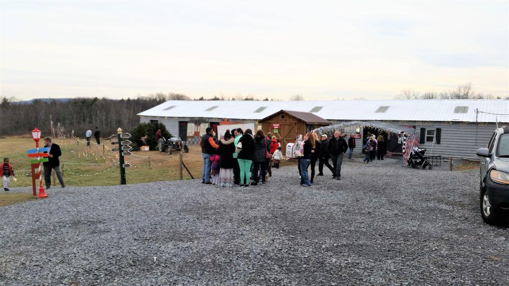 Christmas Land: 3068 Furbeck Rd, Altamont, NY