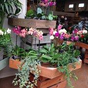 Pasquesi Home U0026 Gardens