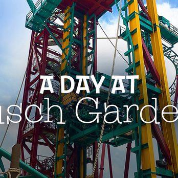 Photo Of Busch Gardens Tampa Fl United States Cobra S Curse At