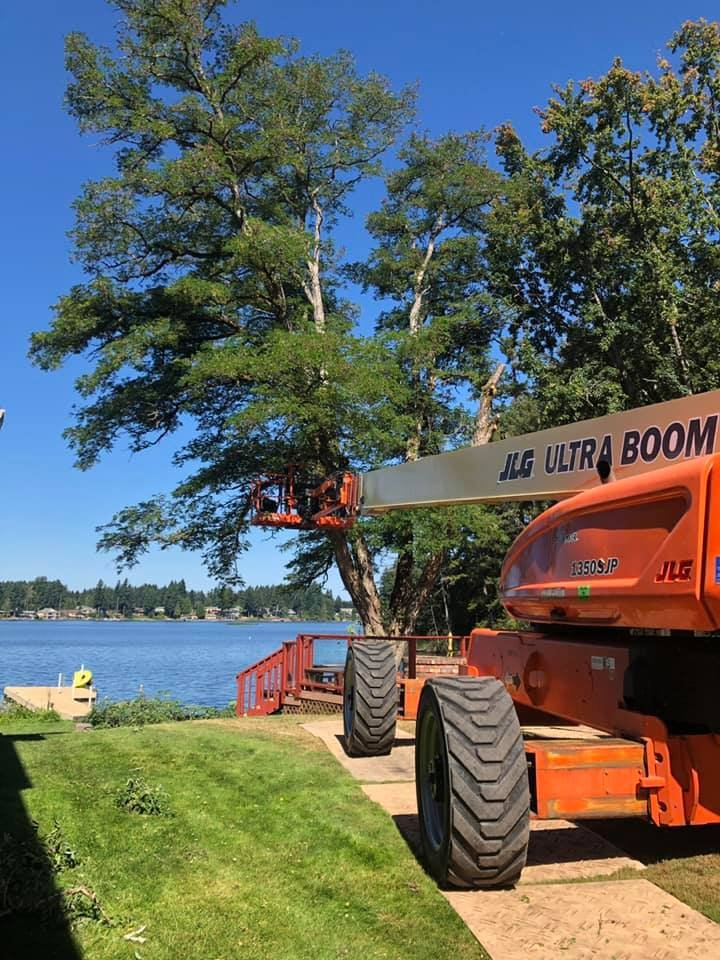 Rons Stump Grinding And Tree Service: Huron, OH