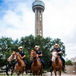 Reunion Tower - 974 Photos & 261 Reviews - Landmarks
