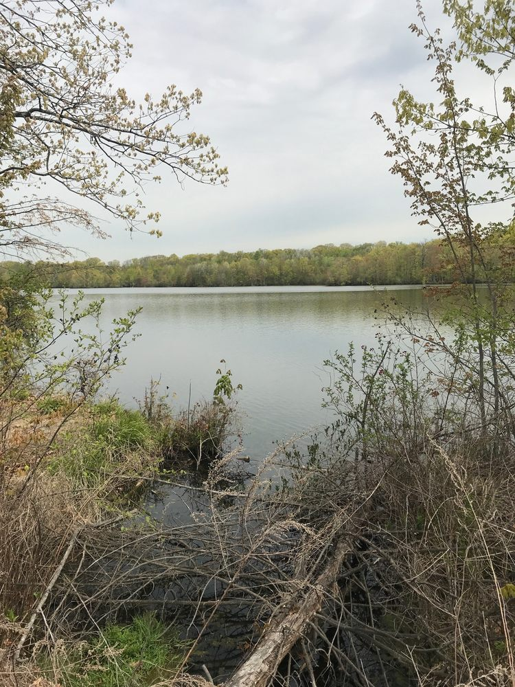 Franklin Lakes Nature Preserve: 480 Dekorte Dr, Franklin Lakes, NJ