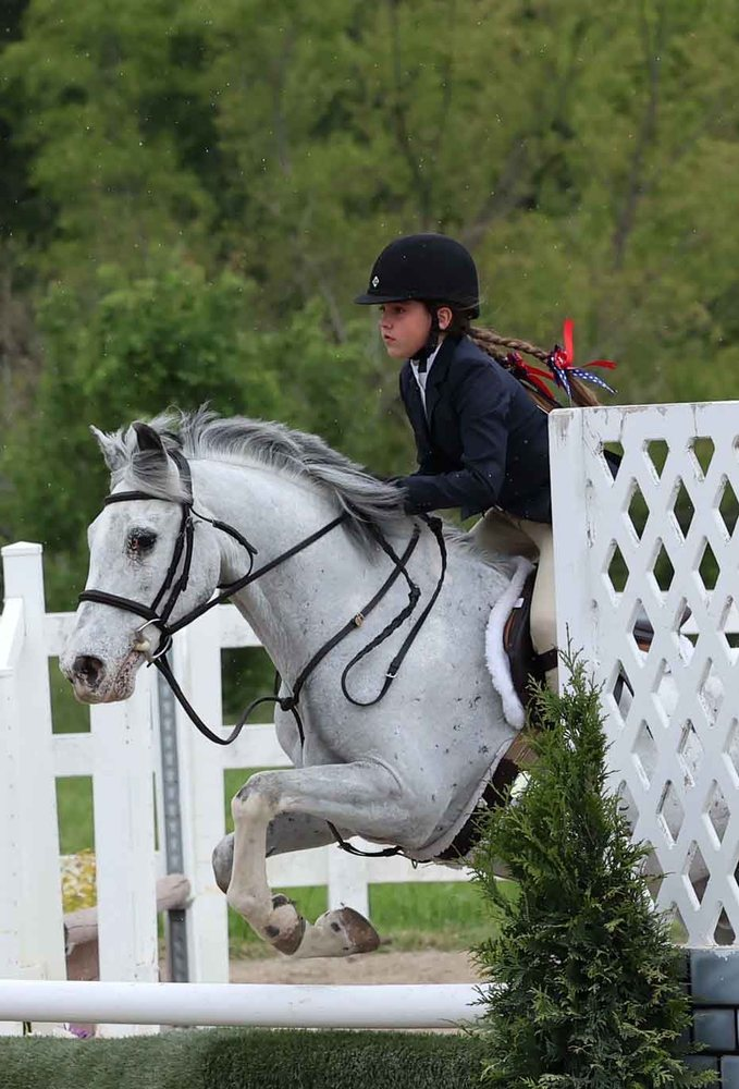 Briarstone Riding Academy: 3924 Floraville Rd, Waterloo, IL