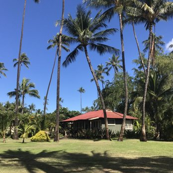 at cottage artwork cottages plantation hawaii tree emilymiller banyan art waimea kauai lg