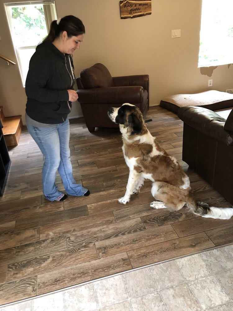 Dreamcatcher Dog Training and Rehab Center: Battle Ground, WA